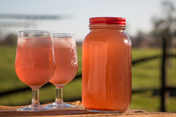 Orange Cranberry Water Kefir