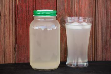 Lemon Lime Twist Water Kefir