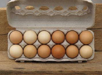 Dozen Jumbo Soy-free Eggs