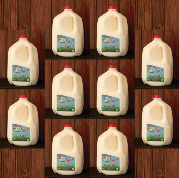 10 Gallon Volume - Raw Cow Milk