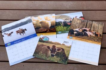 Free 2021 Farm Calendar