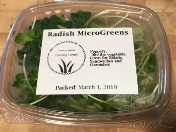 Microgreens, Radish