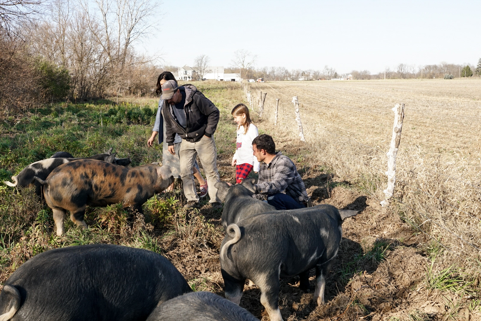 The Key to a Great Partnership  Meet the Brunks - Our Pig Farmers