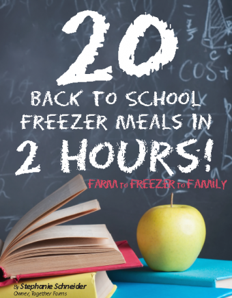 20 Back-to-School Freezer Meals eCookbook