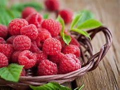 Fruit- Raspberries Flat
