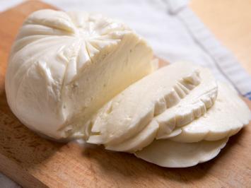 Dairy- Mozzarella Cow Cheese