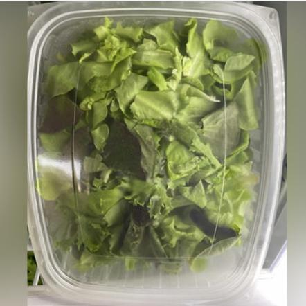Rinsed Salad Mix, box