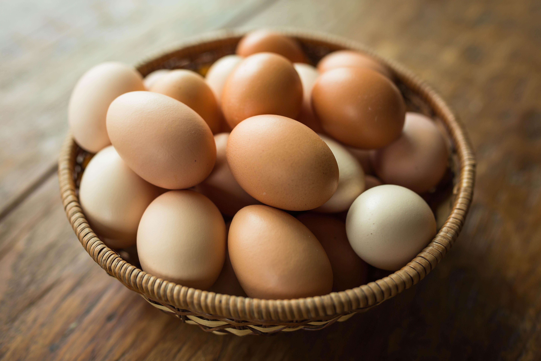 Wilcox Organic Eggs