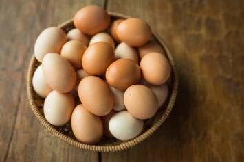 Treebird Organics Pastured Eggs