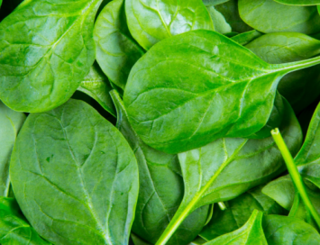 Spinach, 1 lb bag