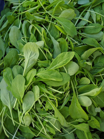 Arugula, 1/2 pound bag