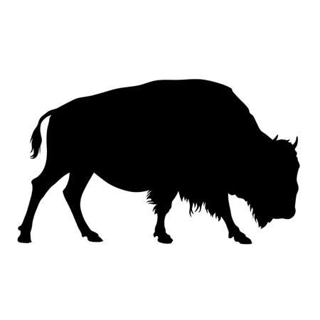 100% Grass-Fed Bison