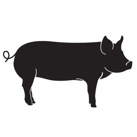 Forest-Raised Pork