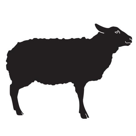 100% Grass-Fed Lamb