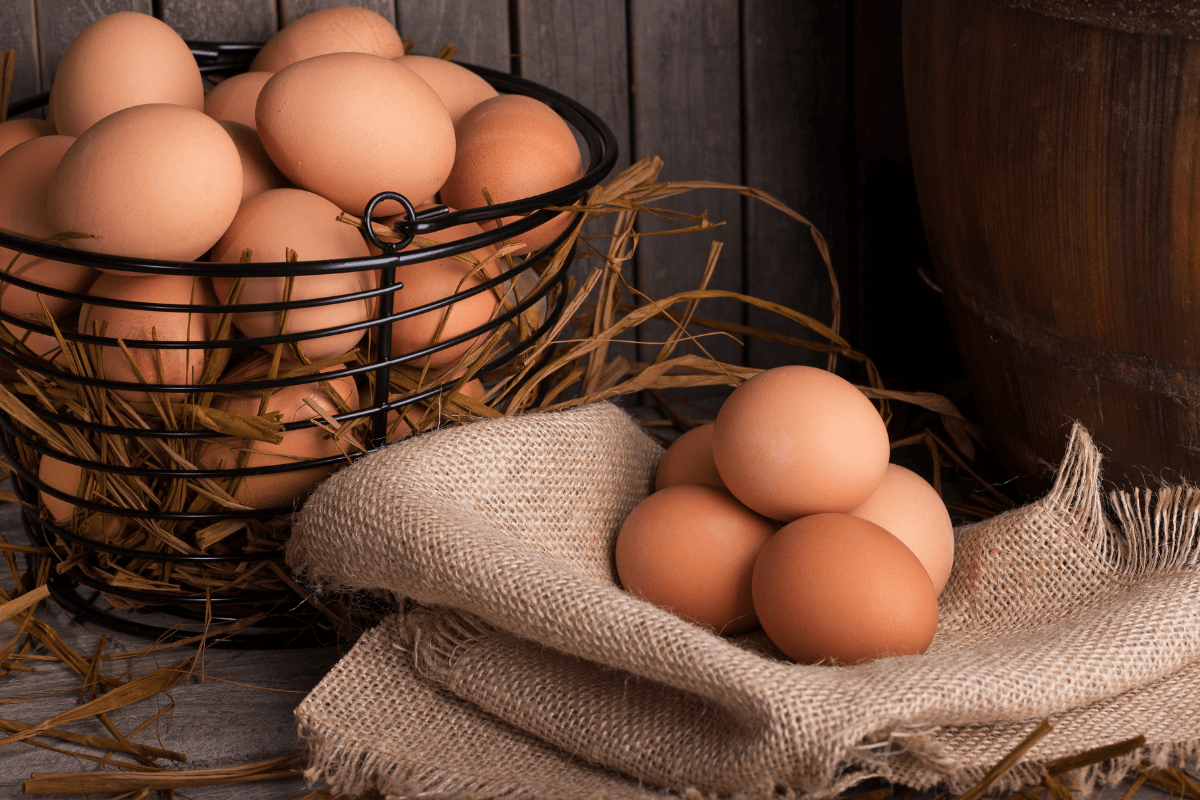 Confusing Egg Labels?       Pick the Right Ones.