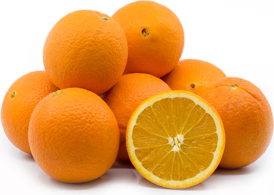 Florida Navel Oranges
