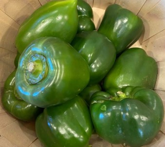 Bell Peppers, Green
