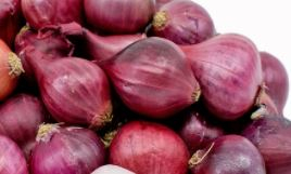 Pearl onions - red