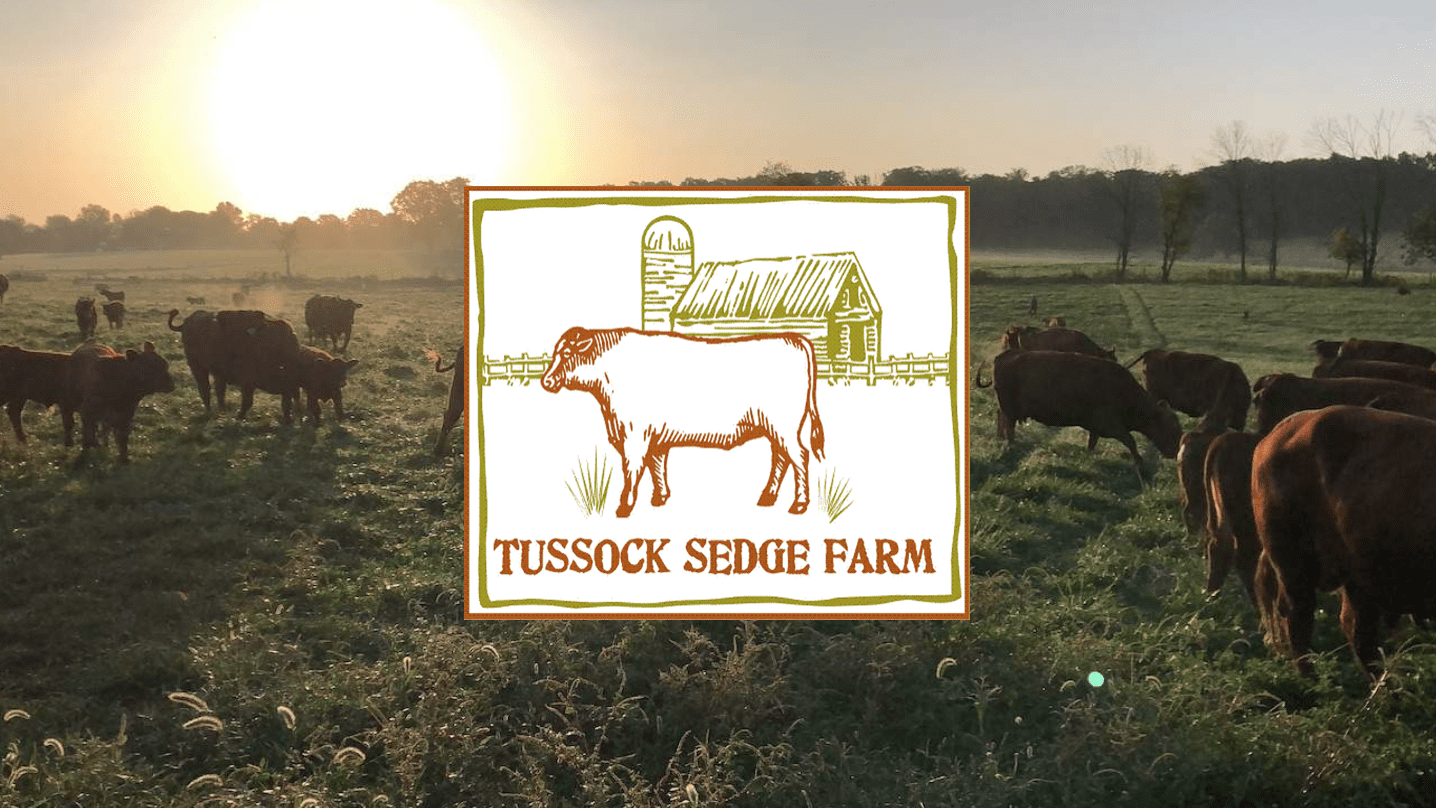 Tussock Sedge Farm Logo