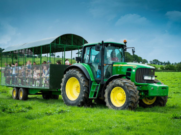 Private Guided Tours with a Farmer - Tractor and Wagon add-on (Fits up to 20 people)