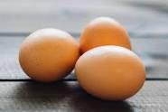 Free-range, Pastured Eggs