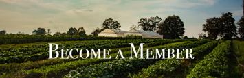 Peak-Season Membership (10 Weeks)
