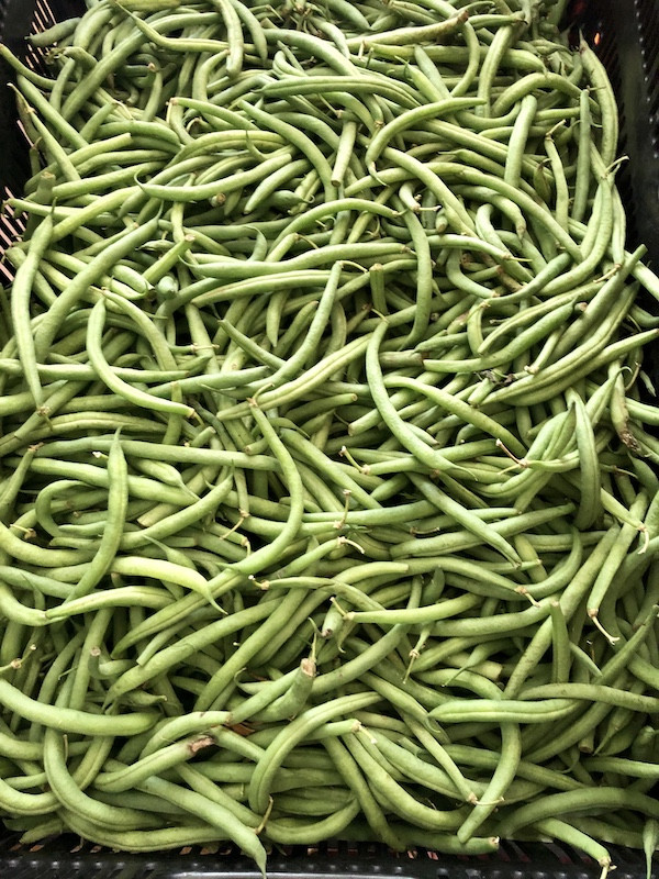 Green Beans (From Crow's Farm)
