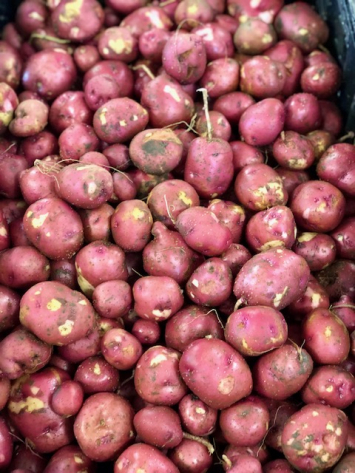 Red Potatoes (from Crow's Farm)