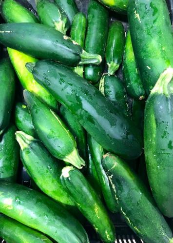 Zucchini Squash (from Crow's Farm)