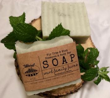 Fir & Mint Shampoo & Body Bar