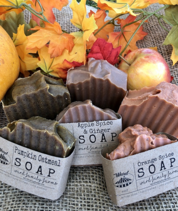 Fall Soap Bundle