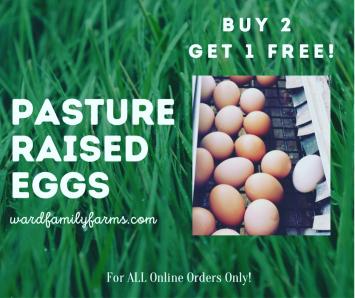 Buy 2 Eggs Get 1 Free