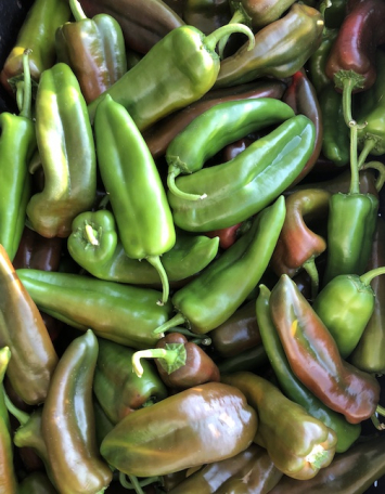Chili Peppers (from Crow's Farm)