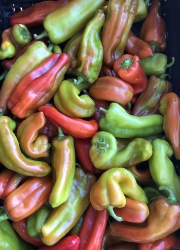 Cubanelle Peppers (from Crow's Farm)