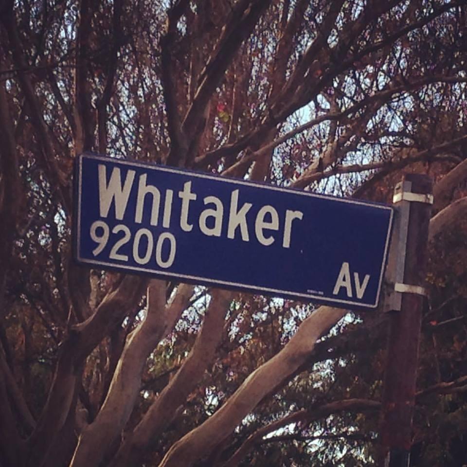 whiatker-ave.jpg
