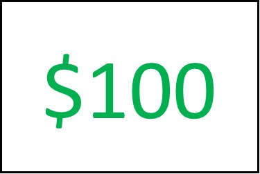 $100 ONLINE STORE Gift Card
