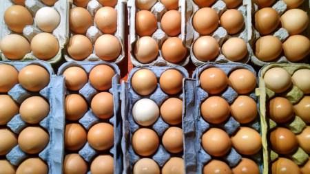 Case of Pasture Raised Chicken Eggs