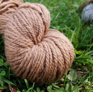 Know Your Shepherd Wool --Pine Nut