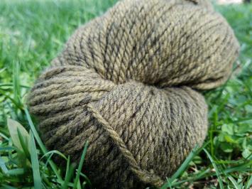 Know Your Shepherd Wool --Seaweed