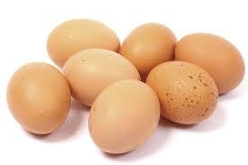 For REAL Free Range Eggs