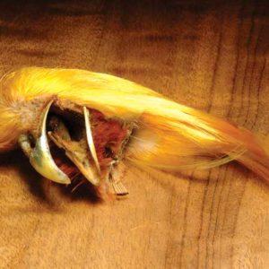 Hareline Golden Pheasant Crests
