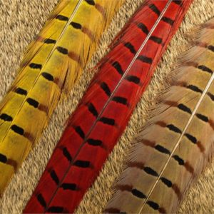 Ringneck Pheasant Center Tails feathers fly tying materials
