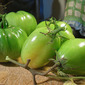 All Good Things Must Come to an End - Pickled Green Tomatoes