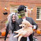 Monster Mash...Hope you all had a wonderful Halloween