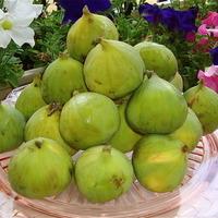 Pear & Fig Chutney