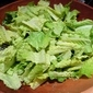 Romaine Salad with Creamy Basil Dressing
