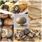 Savory Mushroom Chicken Crepes