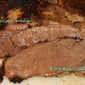 Oven Roasted Smokey Beef Brisket