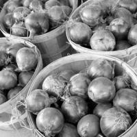Onion 2 Lentil Tomato soup gratin