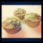 Fat Free Whole Wheat Banana Muffin
